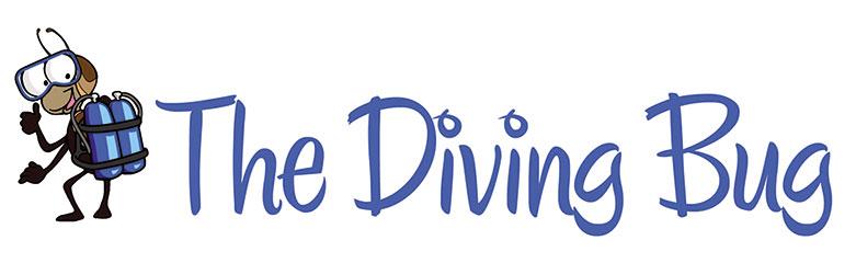 South Florida Diving Life