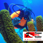 Review: Happy Dive Center, Dominican Republic